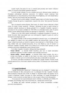 Încadrarea geostructurală a teritoriului României - Pagina 3