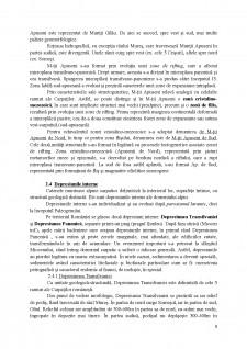 Încadrarea geostructurală a teritoriului României - Pagina 5