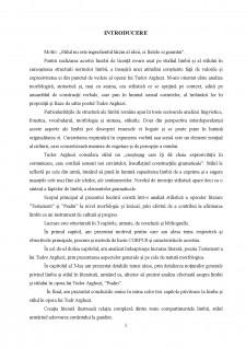 Limbă și stil în opera lui Tudor Arghezi - Pagina 2