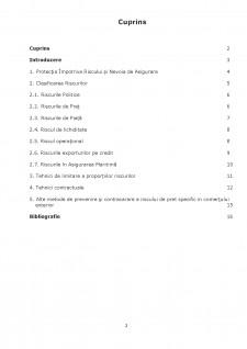 Riscurile comerțului internațional - Pagina 1