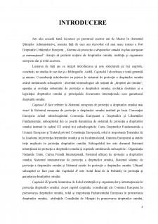 Sistemul de protectie a drepturilor omului in plan european si international - Pagina 3