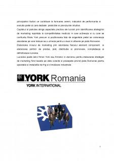 Elaborarea strategiei de marketing a firmei York România - Pagina 4