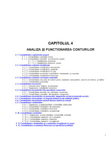 Analiza și Functionarea Conturilor - Pagina 1