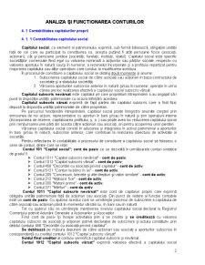 Analiza și Functionarea Conturilor - Pagina 2
