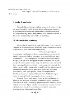 Analiza activității de marketing în cadrul firmei Sushi Master Brașov - Pagina 4