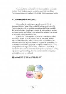 Analiza activității de marketing în cadrul firmei Sushi Master Brașov - Pagina 5