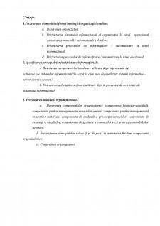 Sistem informațional - Pagina 2
