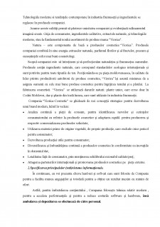 Sistem informațional - Pagina 4