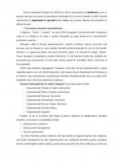 Sistem informațional - Pagina 5