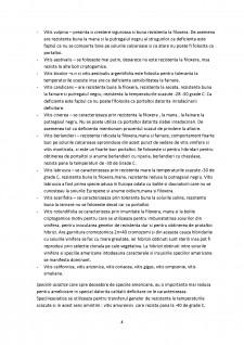Ameliorarea plantelor semestrul II - Pagina 4