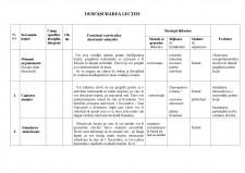Proiect didactic AVAP clasa pregatitoare - 1 Decembrie - Ziua Nationala a Romaniei - Pagina 3