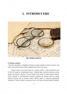 Tehnologie de montaj ochelari și dispozitive de prelucrare optică - Pagina 3