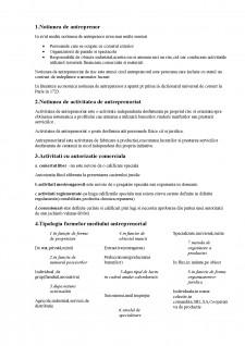 Antreprenoriat - Pagina 1