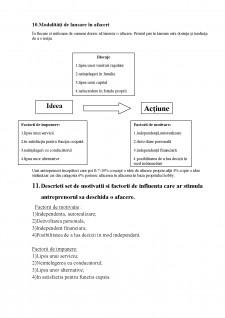 Antreprenoriat - Pagina 4