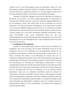 Phraseologismen und ihre Besonderheiten - Pagina 3
