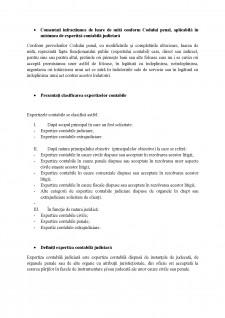 Expertiza contabila - CECCAR - Pagina 4
