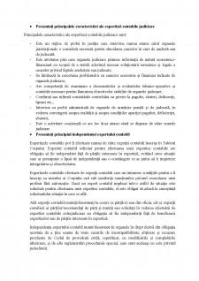 Expertiza contabila - CECCAR - Pagina 5