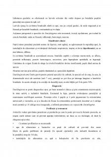 Ihtiopatologie - Boli la pești - Pagina 2