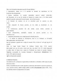 Ihtiopatologie - Boli la pești - Pagina 3