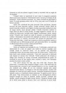 Inima - Pagina 2