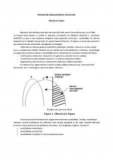 Prezentare managementul desfacerii - Metoda Six Sigma - Pagina 1