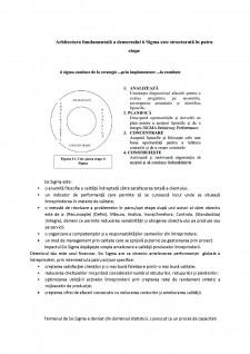 Prezentare managementul desfacerii - Metoda Six Sigma - Pagina 2