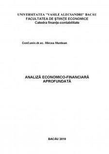 Analiză economico-financiară aprofundată - Pagina 1