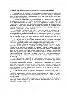 Analiză economico-financiară aprofundată - Pagina 5