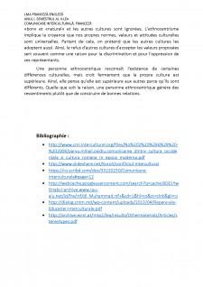 Le conflit interculturel et l'ethnocentrisme - Pagina 5