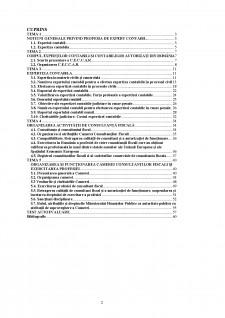 Expertiză contabilă și consultanță fiscală - Pagina 2
