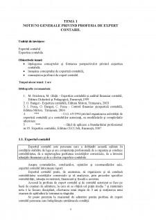 Expertiză contabilă și consultanță fiscală - Pagina 3