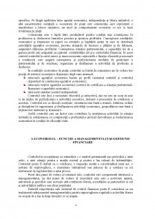 Control de gestiune - Pagina 3