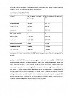 Analiza economico-financiara - Pagina 2