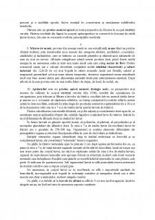 Apiterapia - Pagina 4