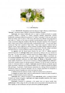 Apiterapia - Pagina 5