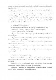 Drept internațional public - Pagina 5