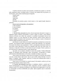 Prezervarea documentelor - Pagina 3