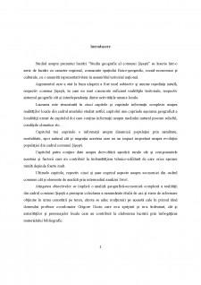 Studiu geografic al comunei Șișești - Pagina 4