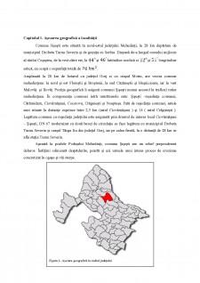 Studiu geografic al comunei Șișești - Pagina 5