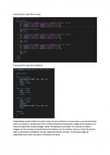 Proiect grafică (depășire de mașini) - Pagina 2
