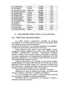Diagnosticul Economico-Financiar al SC Flavicom SA - Pagina 4