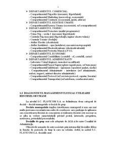 Diagnosticul Economico-Financiar al SC Flavicom SA - Pagina 5