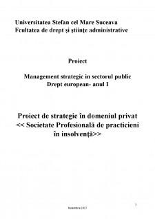 Proiect de strategie în domeniul privat - Societate Profesională de practicieni în insolvență - Pagina 1