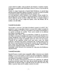 Istoria Comertului - Pagina 2