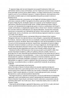Metode biostratigrafice de reconstituire a paleomediilor de sedimentare continentale - Bazinul hateg - Pagina 5