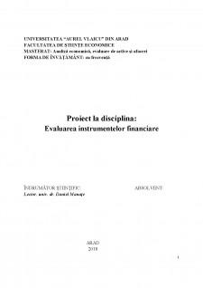 Evaluarea instrumentelor financiare - Pagina 1