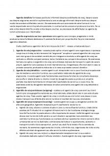 Tehnica operațiunilor de turism - Pagina 3