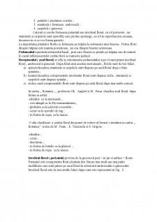 Prezentarea părților componente ale unei flori - Pagina 3
