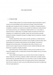 Metode de reducere a poluării sonore - Pagina 1
