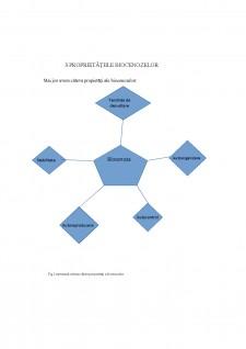 Biocenoză - Pagina 5